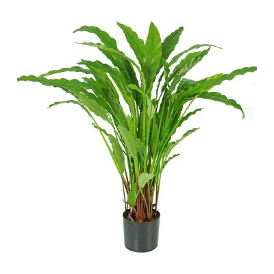 Potted Artificial Calathea Bluegrass Plant, 82cm