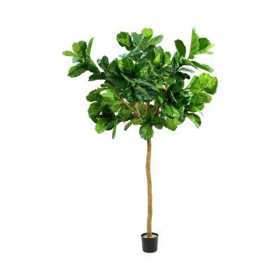 Artificial Fiddle Leaf Tree, 320cm