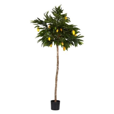 Potted Artificial Mango Tree, 180cm