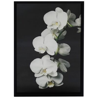 Moulton Timber Framed Wall Art Print, Orchid, 120cm