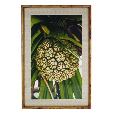 Chavez Bamboo Framed Wall Art Print, Pandanus Nut, 90cm
