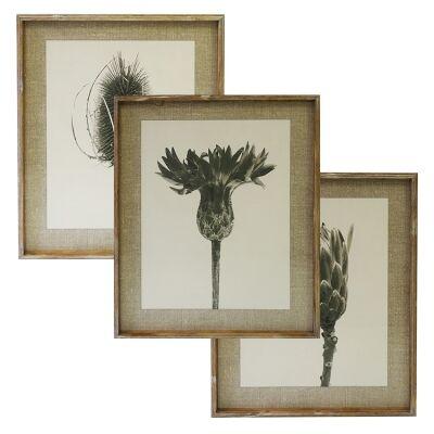 Meadows 3 Piece Pine Timber Framed Wall Art Print Set, 70cm