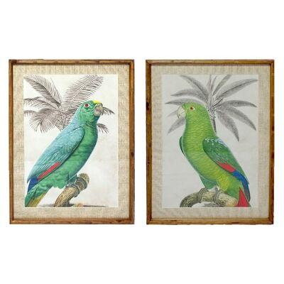 Chavez 2 Piece Bamboo Framed Wall Art Print Set, King Parrot, 74cm