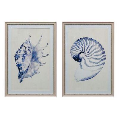 Beach Shells 2 Piece Assorted Framed Wall Art Set, 74cm