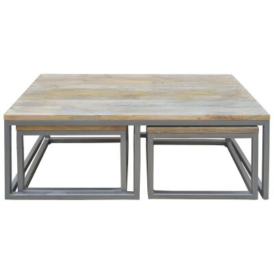 Byrne 3 Piece Mango Wood & Metal Nested Coffee Table Set, 120cm