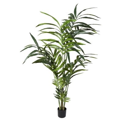 Potted Artificial Kentia Palm, 150cm