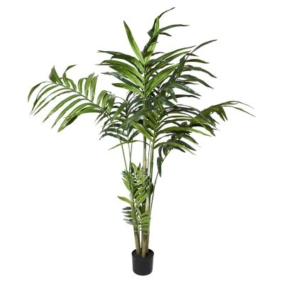 Potted Artificial Kentia Palm, 180cm