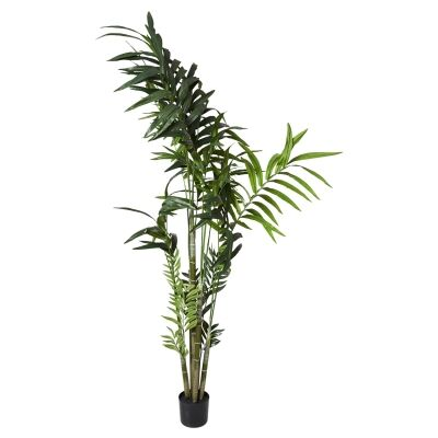 Potted Artificial Kentia Palm, 210cm
