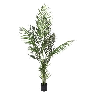 Potted Artificial Acrea Palm, 120cm