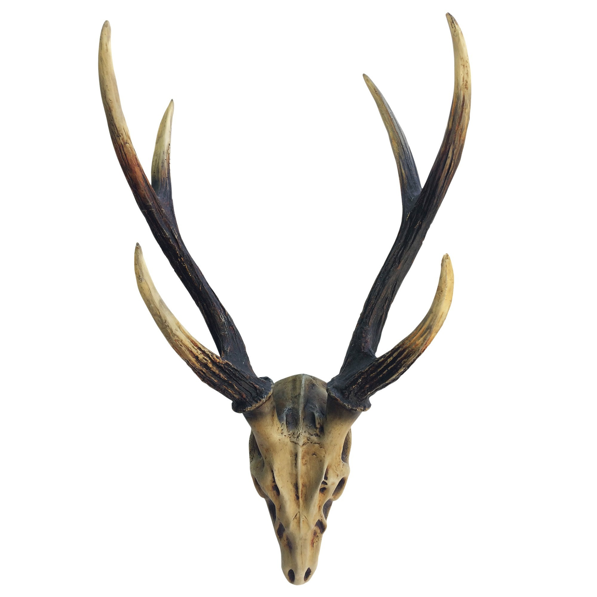 Stag Skull Wall Decor