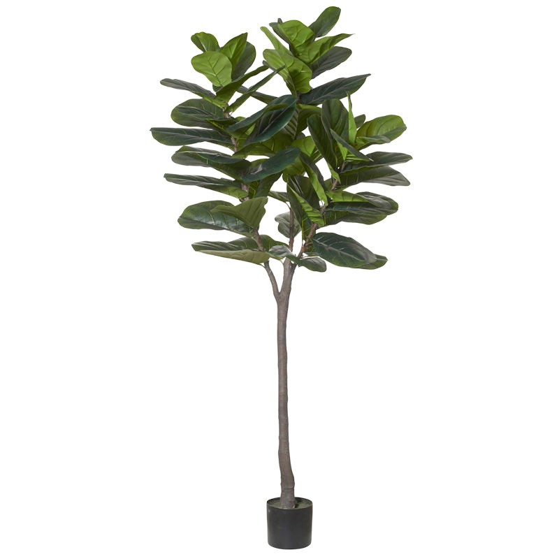 Potted Artificial Fiddle Leaf Fig Tree, Type A, 210cm