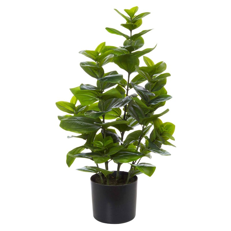 Potted Artificial Stella Magnolia Bush, 77cm