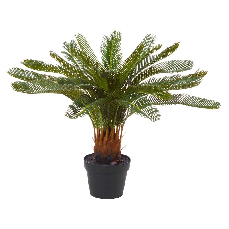 Potted Artificial Cycas Plant, 72cm