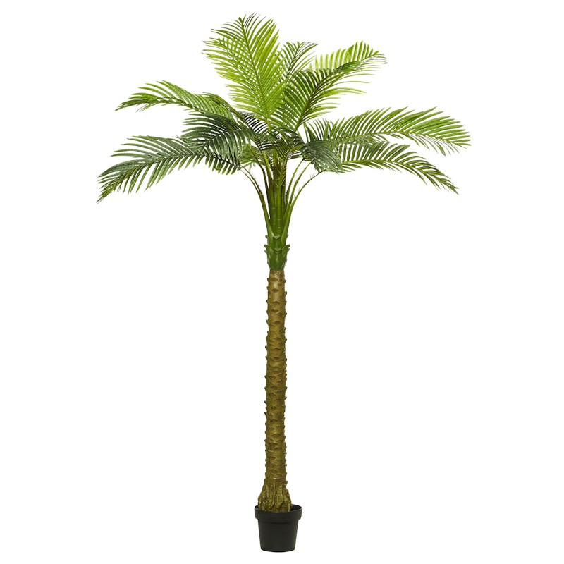 Potted Artificial Pheonix Palm Tree, Type A, 210cm