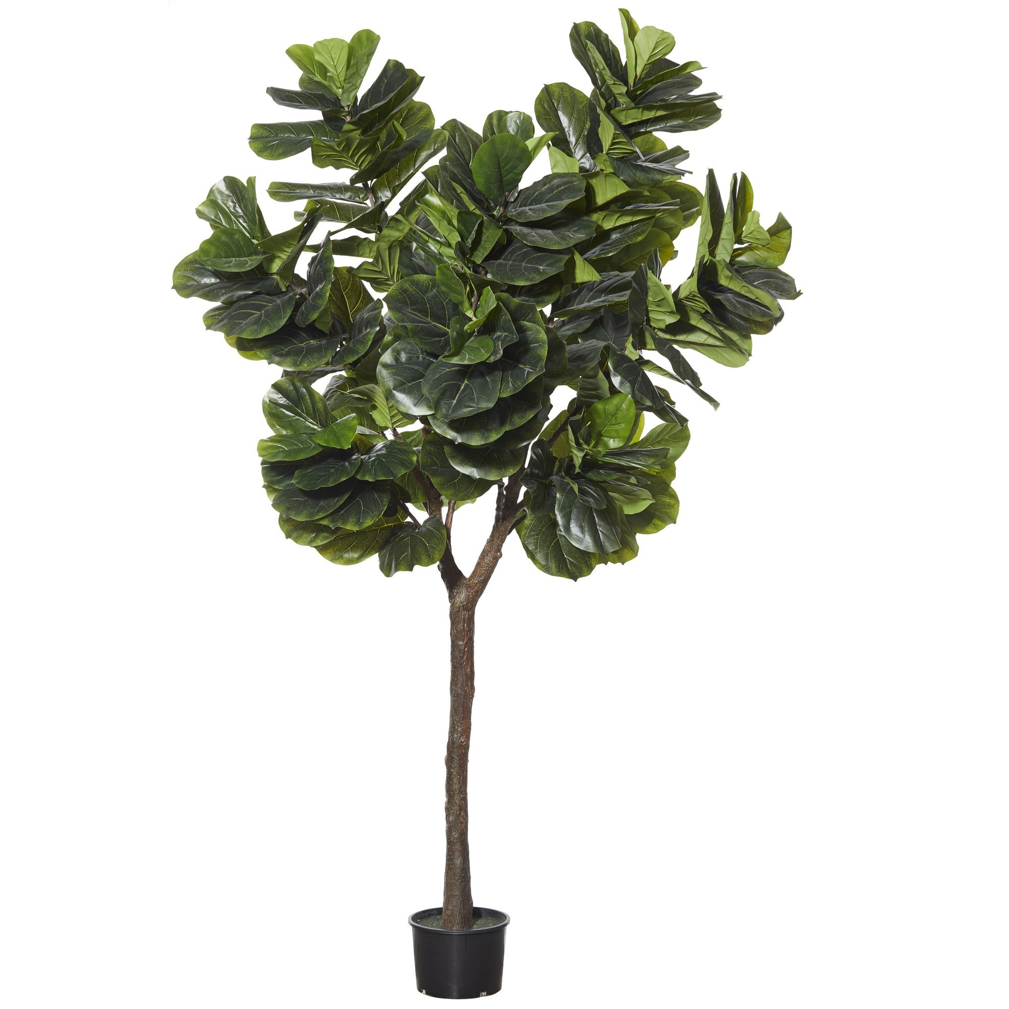 Potted Artificial Giant Fiddle Tree, 300cm