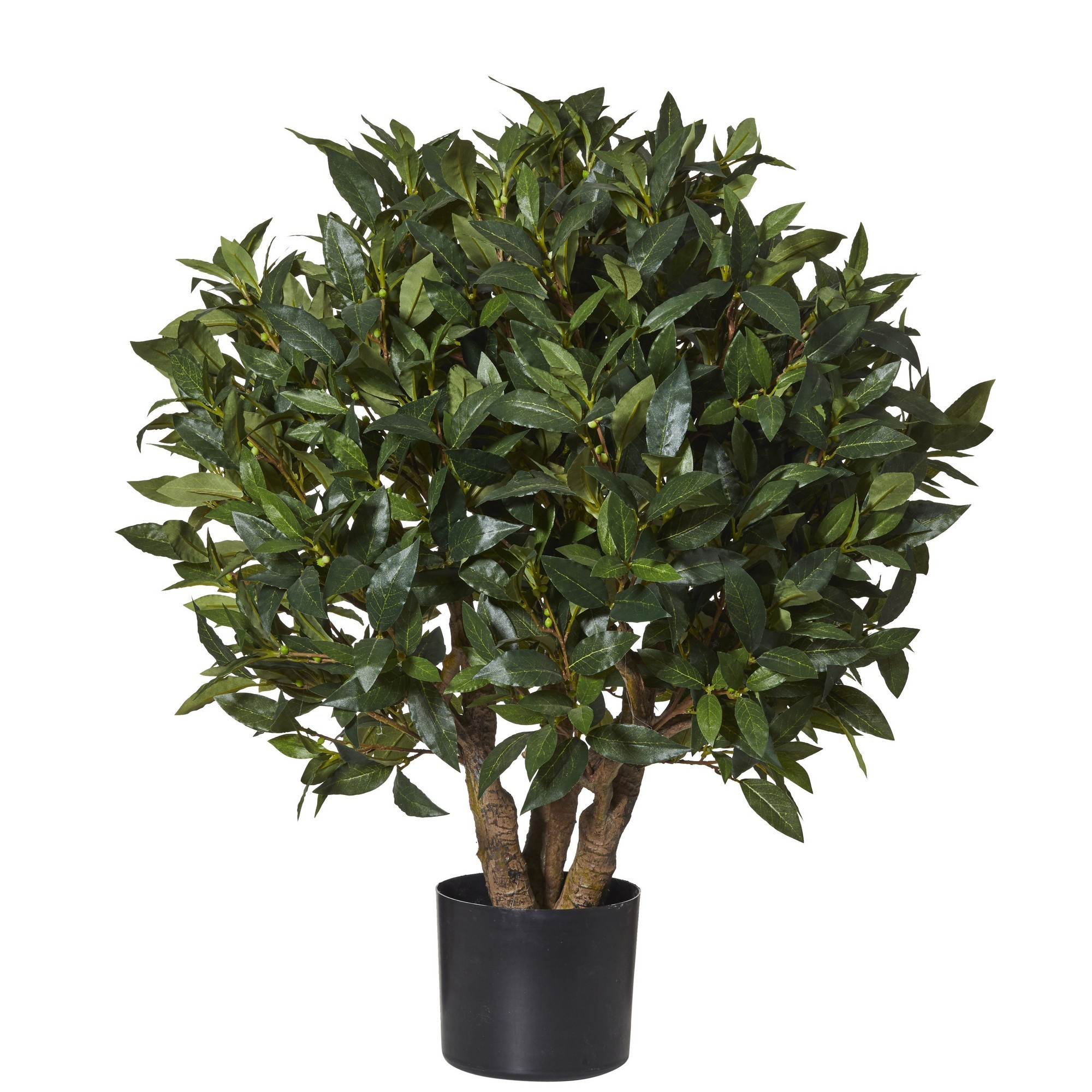 Artificial Sweet Bay Short Ball Topiary, 80cm