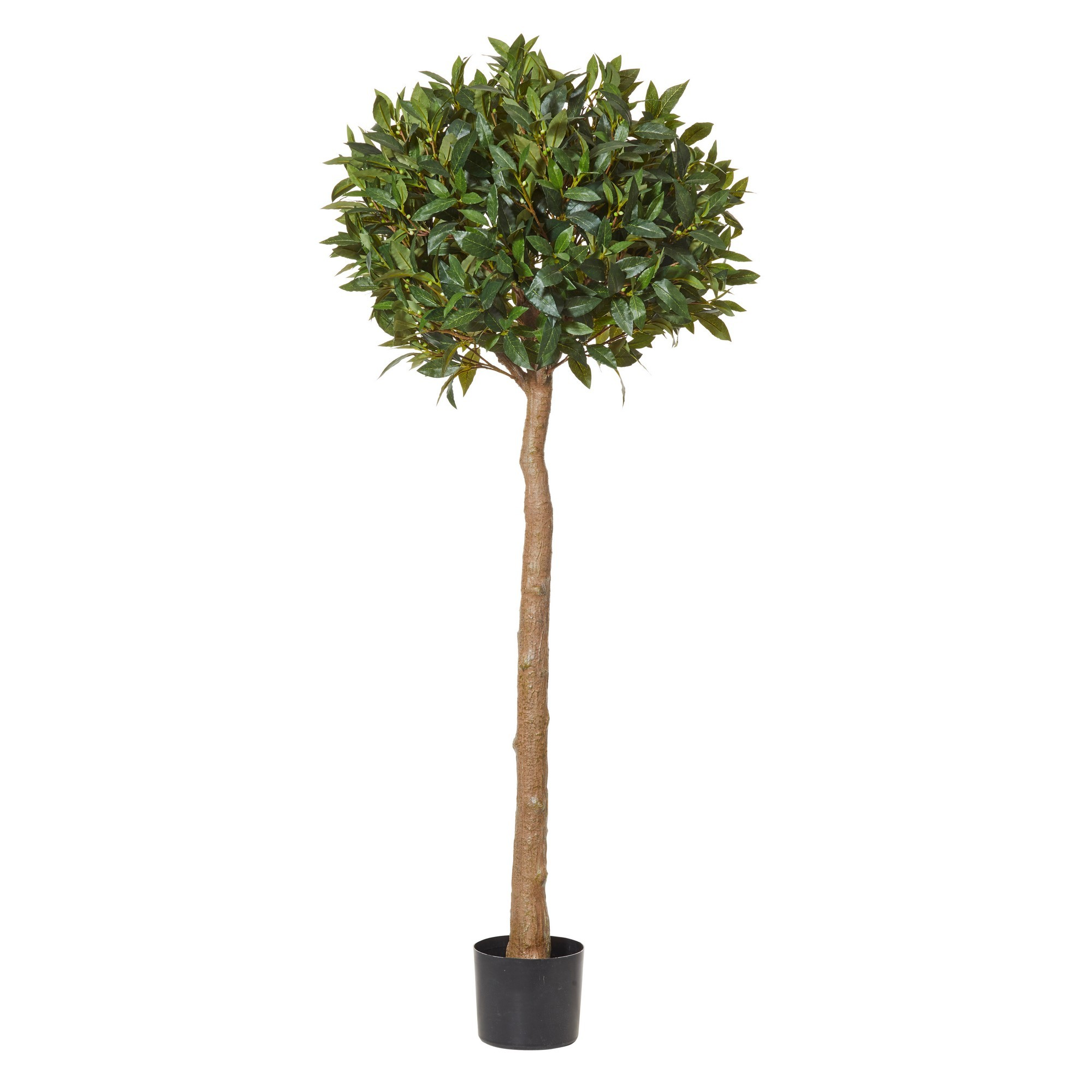 Potted Artificial Sweet Bay Tall Ball Topiary, 150cm