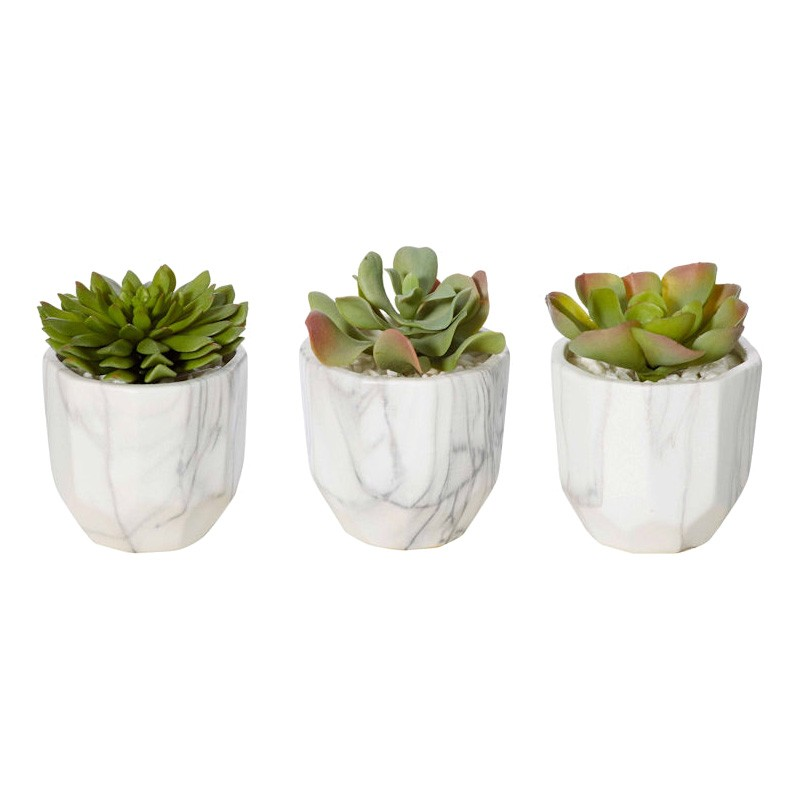 Tivoli  3 Piece Assorted Potted Artificial Succulents Set
