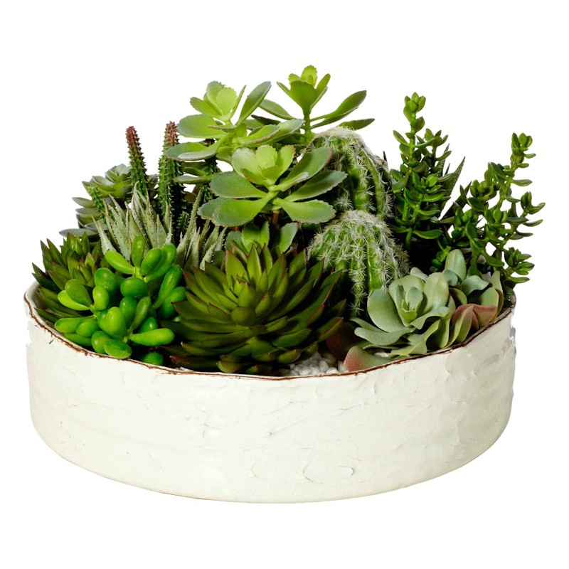 Weston Mixed Artificial Succulents in Ceramic Bowl Planter