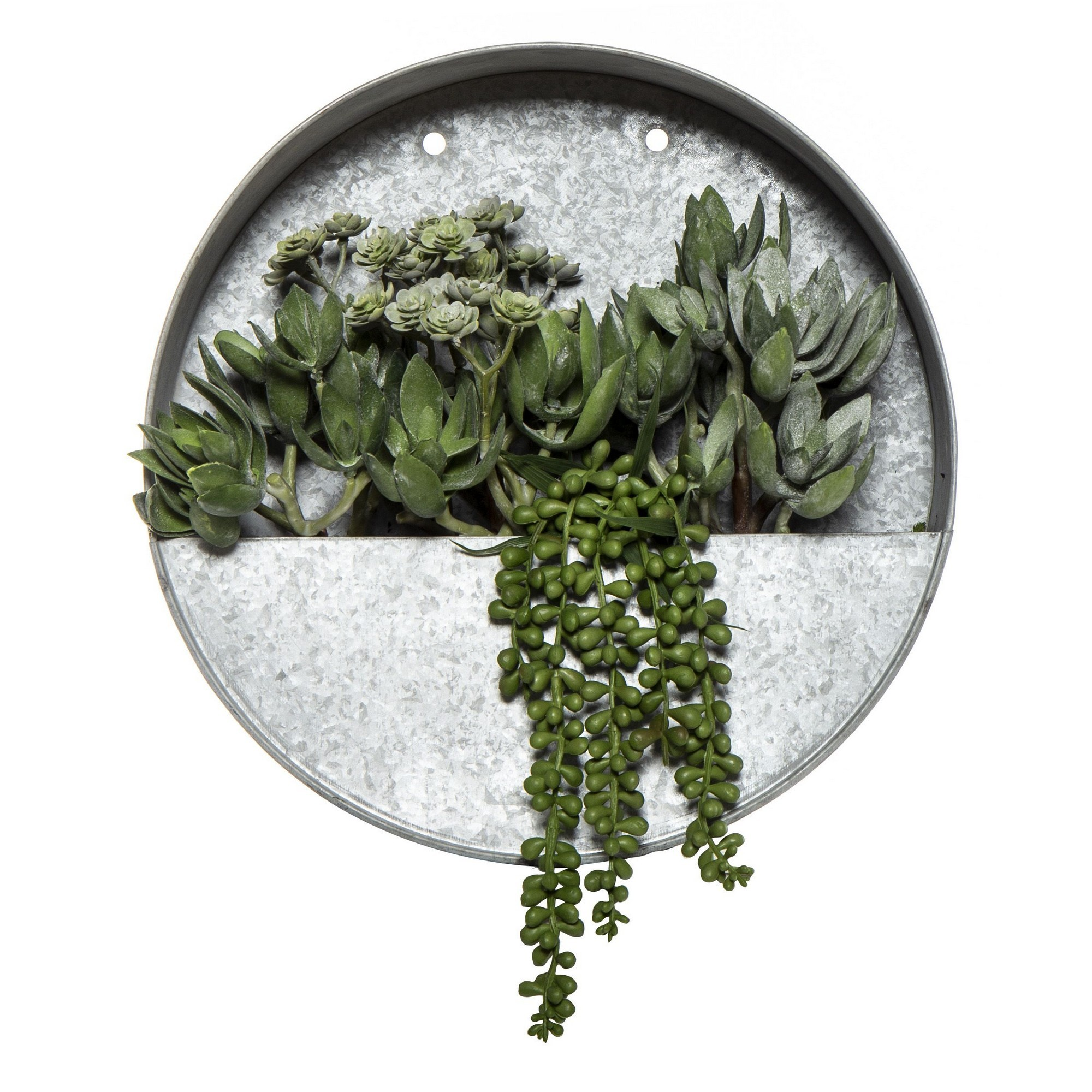 Artificial Succulent in Frost Round Metal Wall Planter