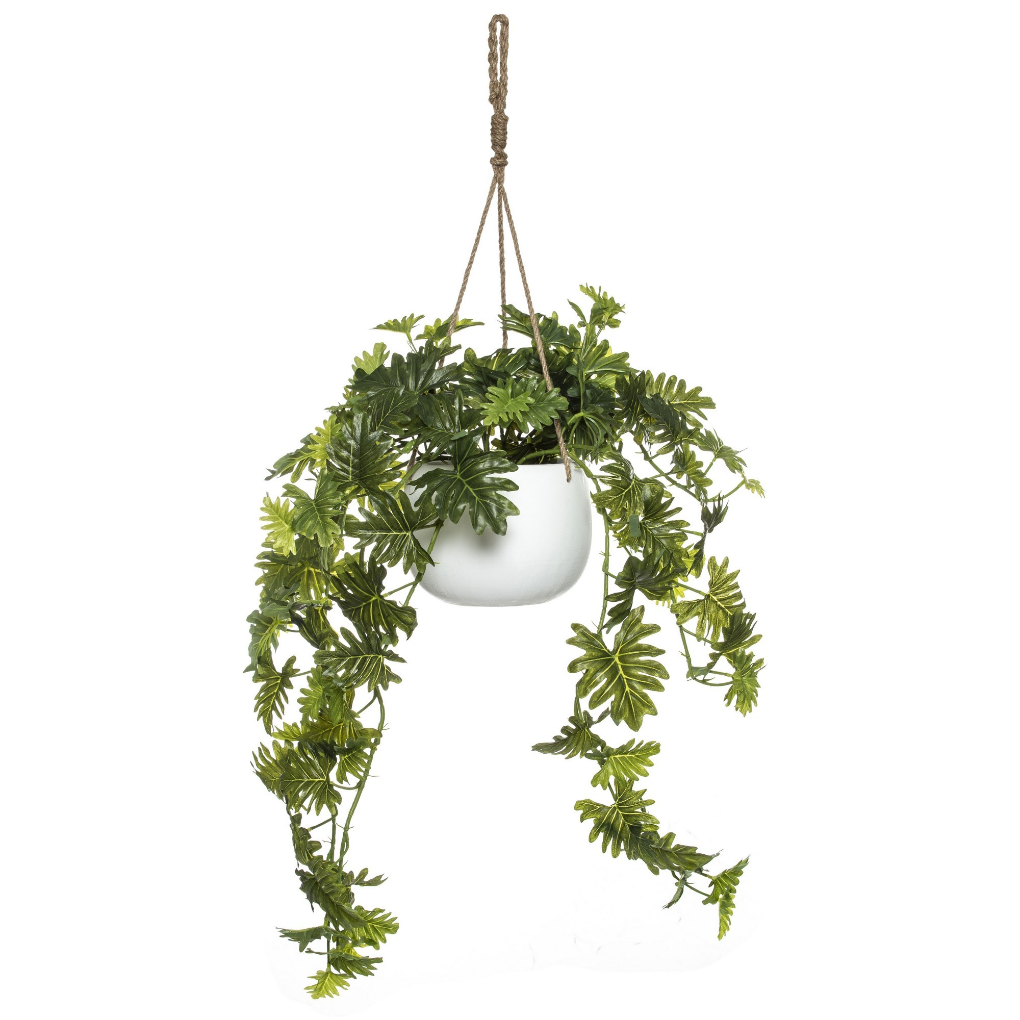 Katia Artificial Selloum Philodendron in Hanging Bowl