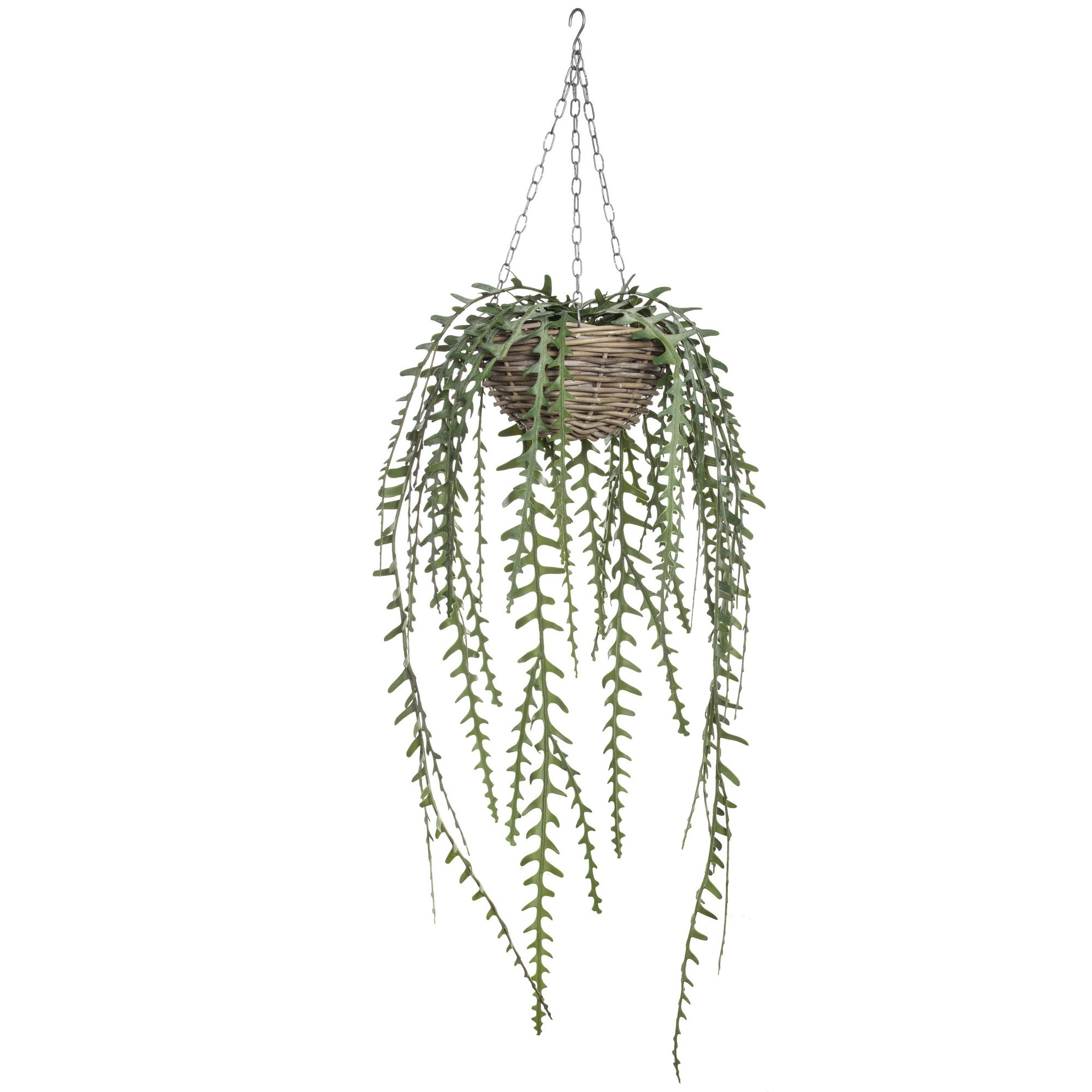 Artificial Cactus Fern in Rattan Hanging Bowl