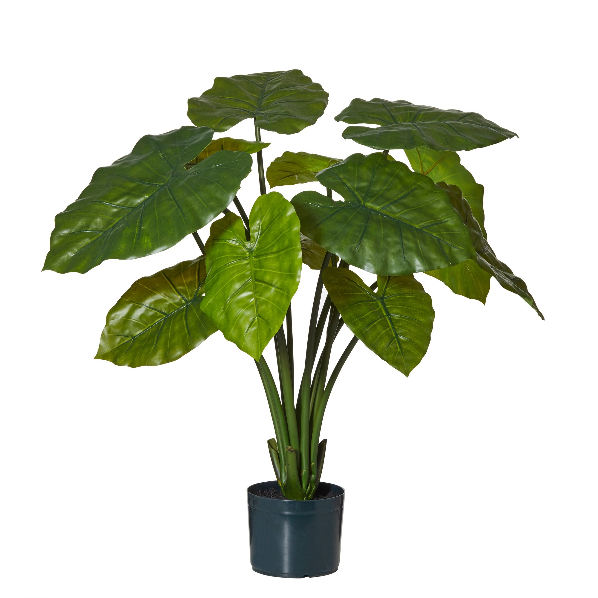 Potted Artificial Wild Taro Plant, 97cm