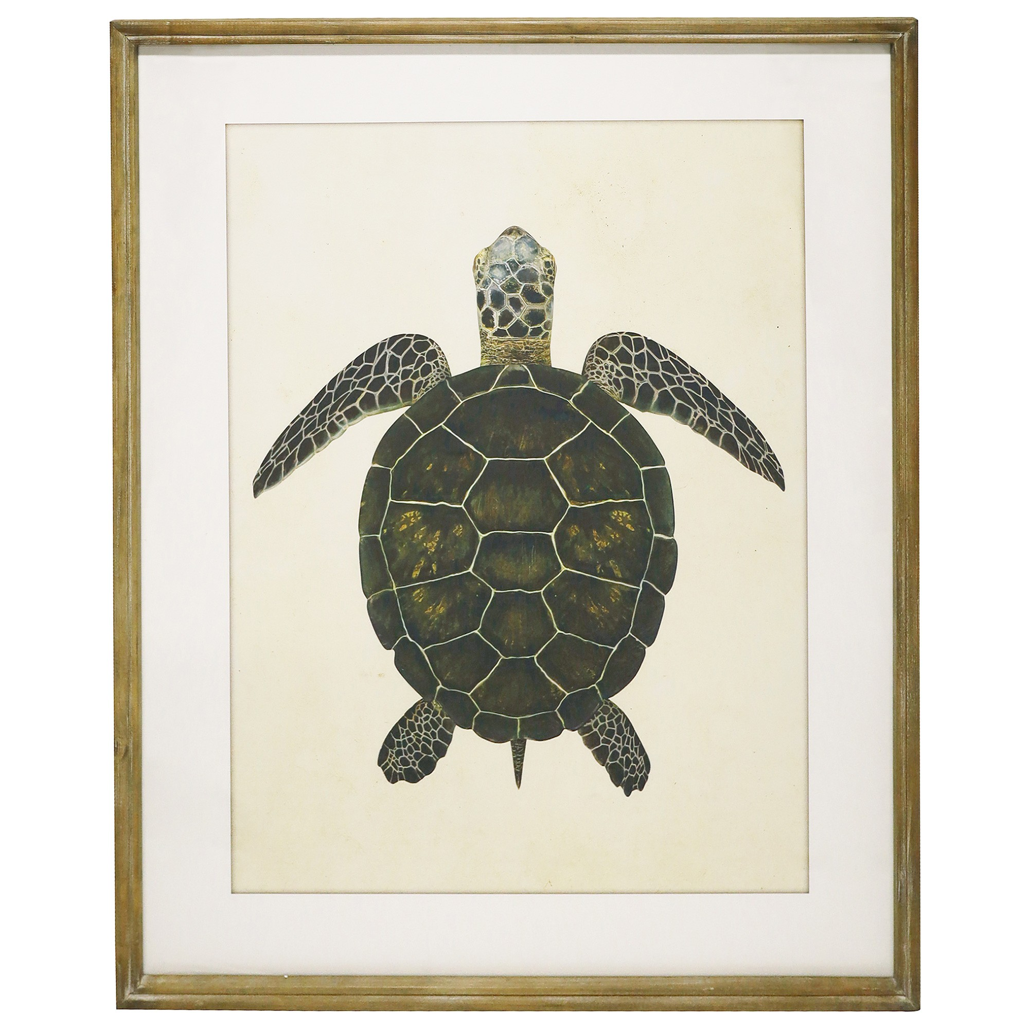 Luisa Framed Turtle Canvas Wall Art, 100cm