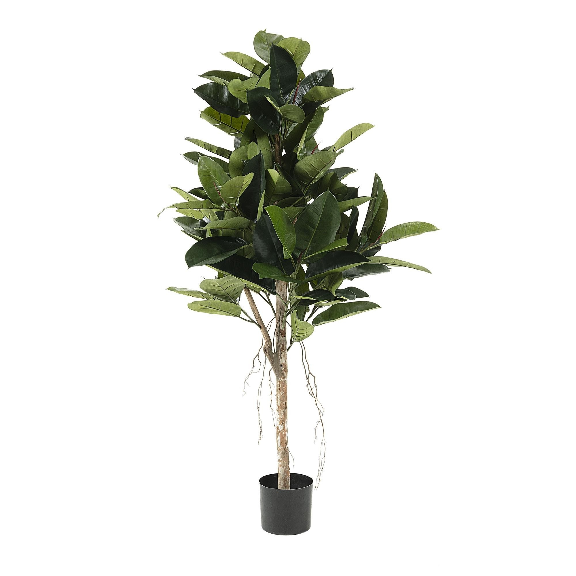 Kessell Potted Artificial Fig Tree, 150cm