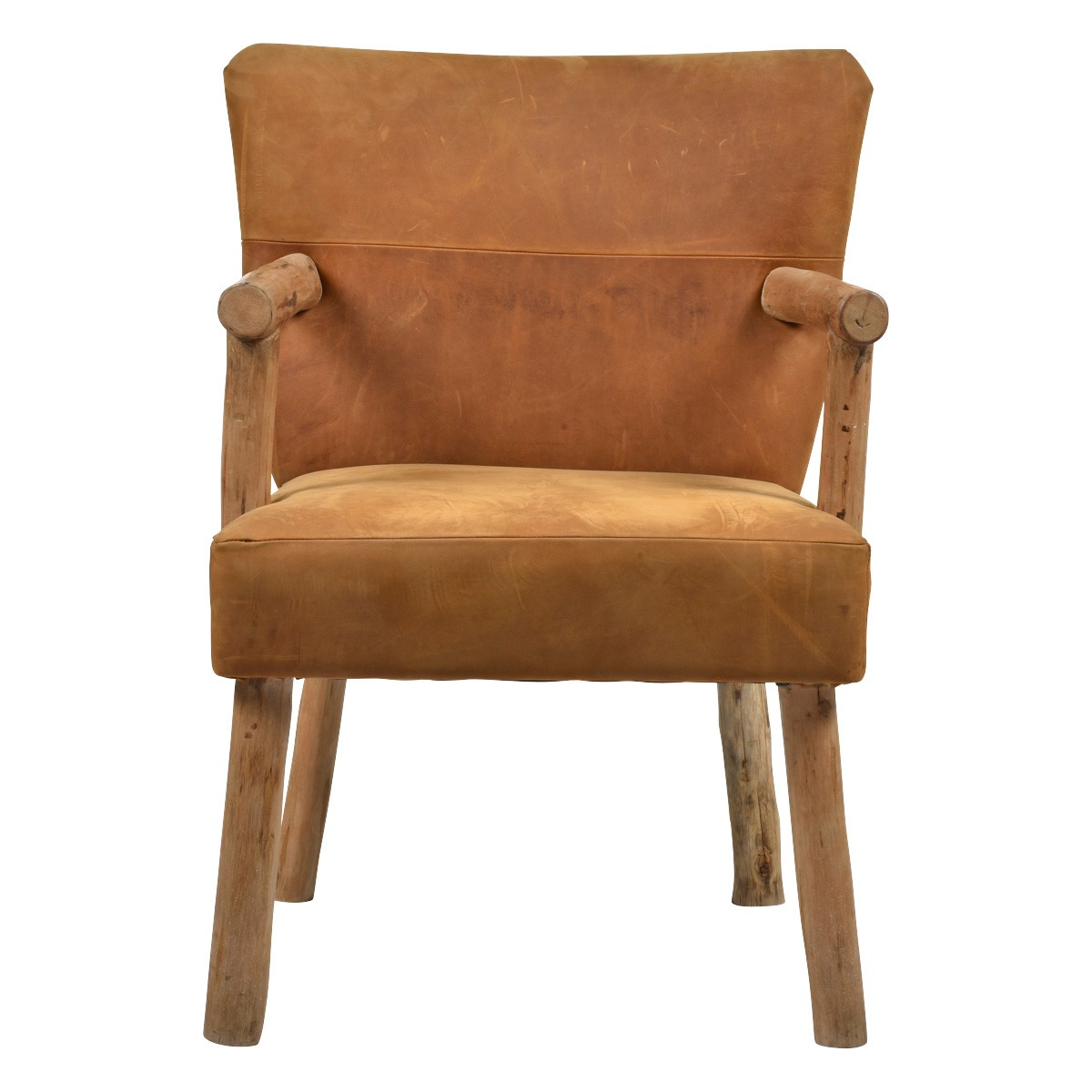 Palermo Leath & Timber Accent Armchair, Tan