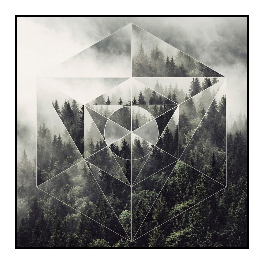 Prism Framed Wall Art Print, Forest, 60cm