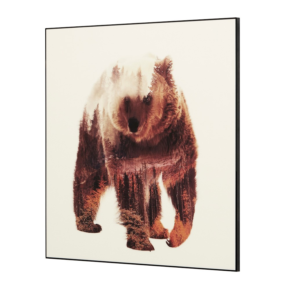 Wilden Framed Wall Art Print, Grizzly, 80cm