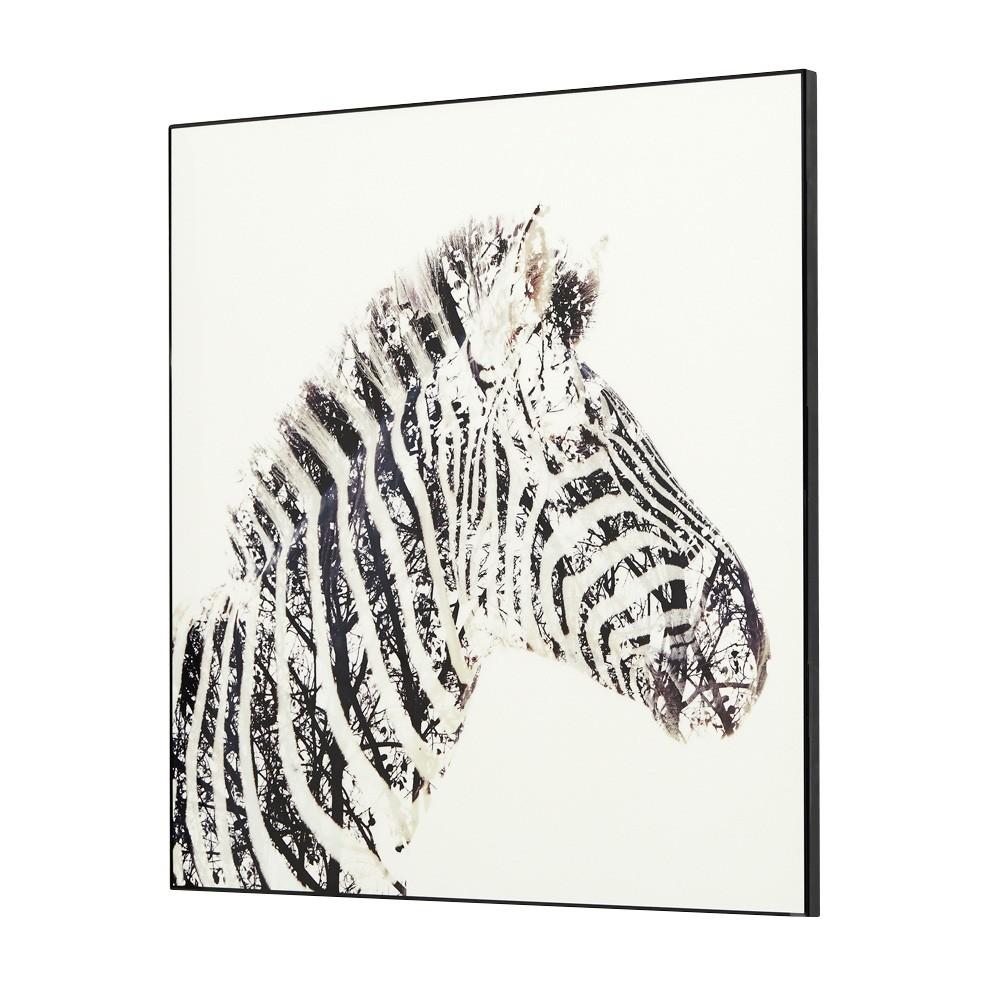 Wilden Framed Wall Art Print, Zebra Portrait, 80cm