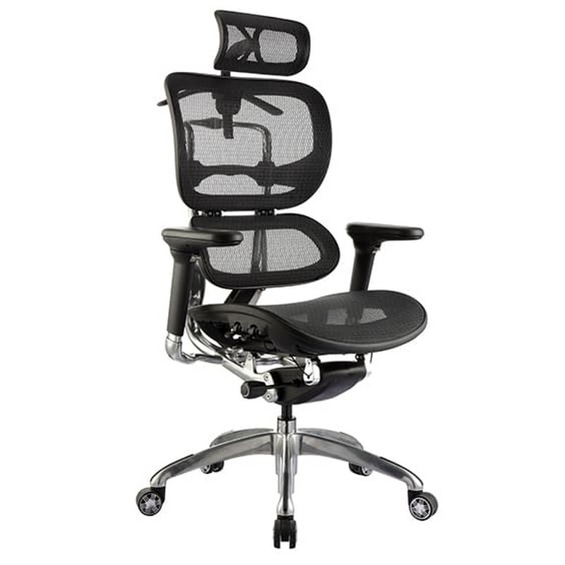 Ergo Fabric Executive Office Chair with Headrest