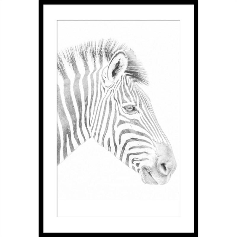 Zebra Photography Wall Art - Large