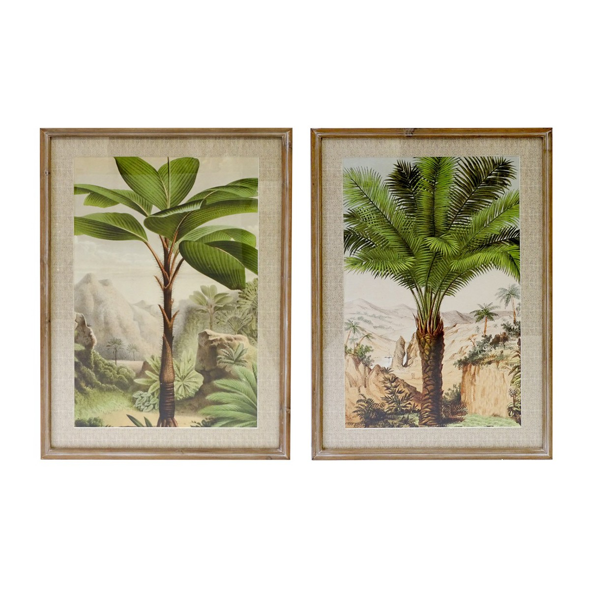 Meadows 2 Piece Timber Framed Wall Art Print Set, Palm Valley, 90cm